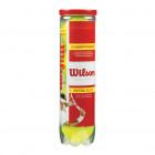 Bóng Tennis Wilson Championship (lon 4 bóng)